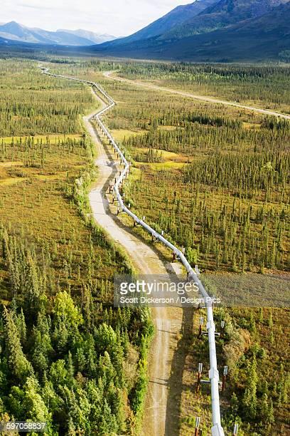 trans-alaska pipeline through brooks range out to the noatak river, arctic alaska in summertime - paisajes de alaska fotografías e imágenes de stock