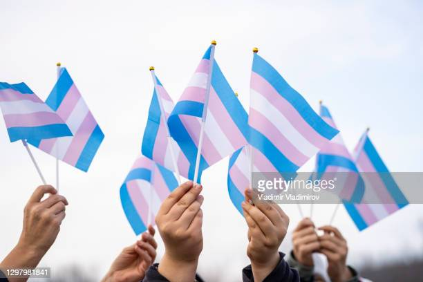 transgender flags holding by people on a demontration - flag stock pictures, royalty-free photos & images