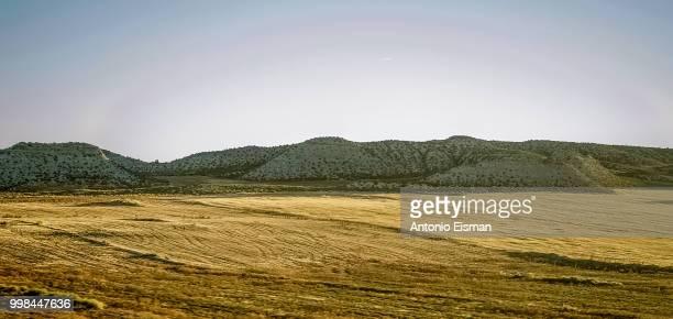 Transmonegrino Enoch Hills