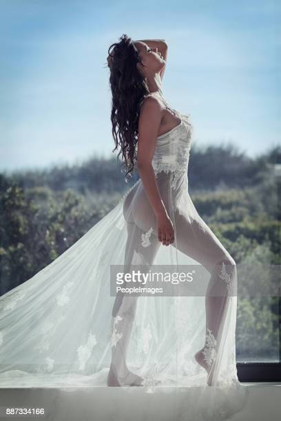 transparent beauty - women in see through dresses stock photos and pictures