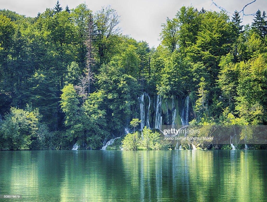 Transparente river im Nationalpark Plitvicer, Kroatien : Stock-Foto