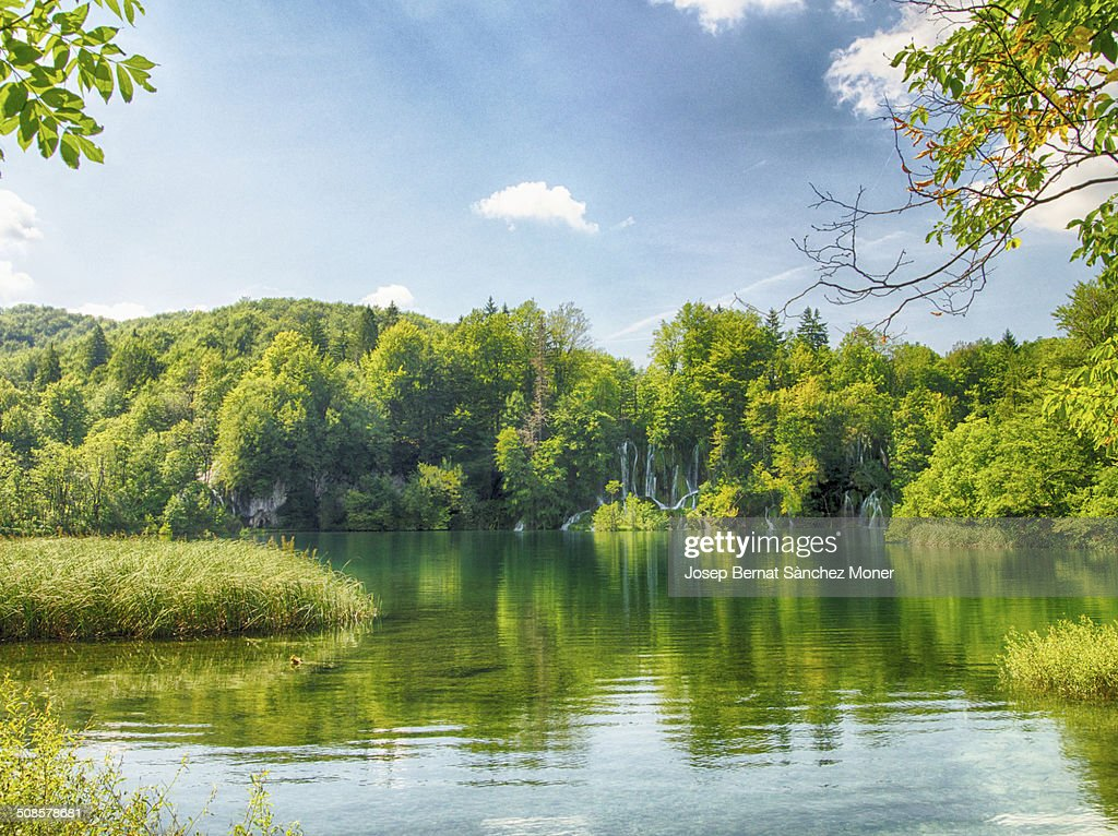 Transparent river in Plitvice, Croatia : Stockfoto