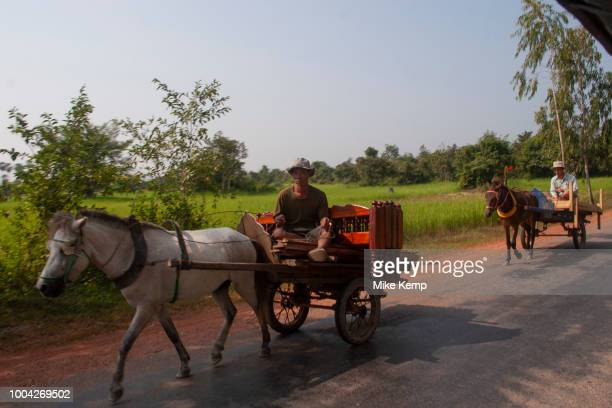 Transport workers move bads by horse and cart past rice paddy fields at sunrise on the road to Banteay Srei north of Siem Reap and the main temple...