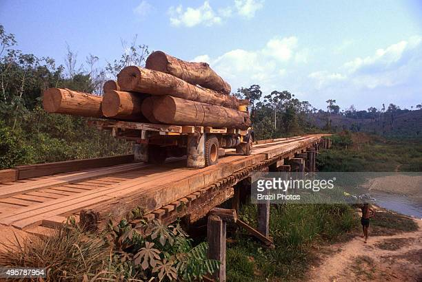 Transportation of timber logs Amazon rainforest deforestation Brazil