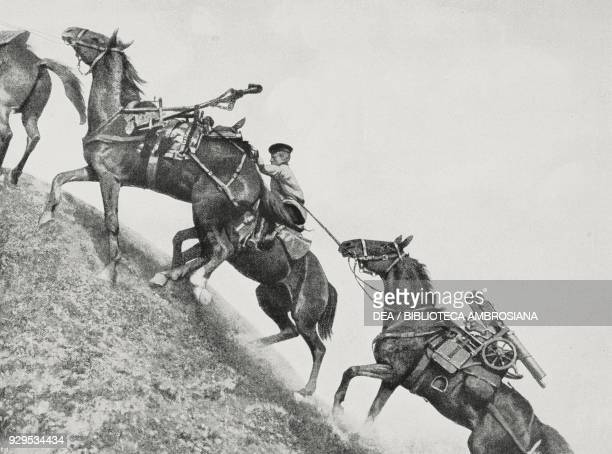 Transporting Russian machine guns over the Carpathian mountains Galicia World War I photograph by A Fraccaroli from L'Illustrazione Italiana Year XLI...