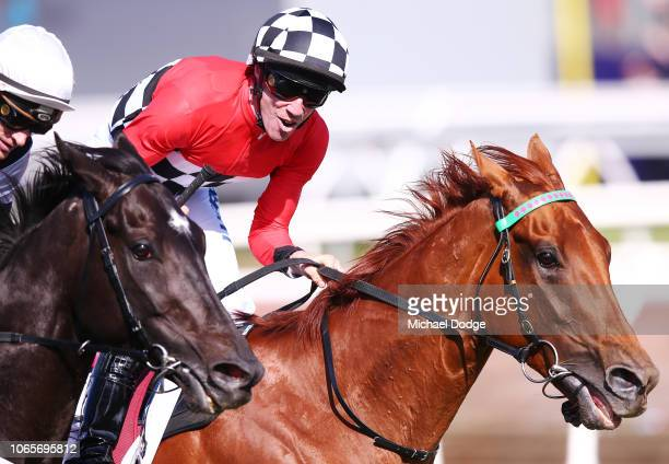 Trap for Fools ridden by John Allen wins race 8 the Seppelt Mackinnon Stakes during Stakes Day at Flemington Racecourse on November 10 2018 in...