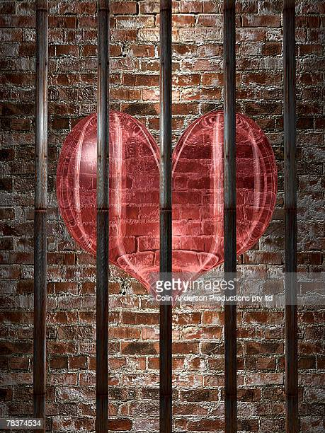 Le cœur des prisonniers