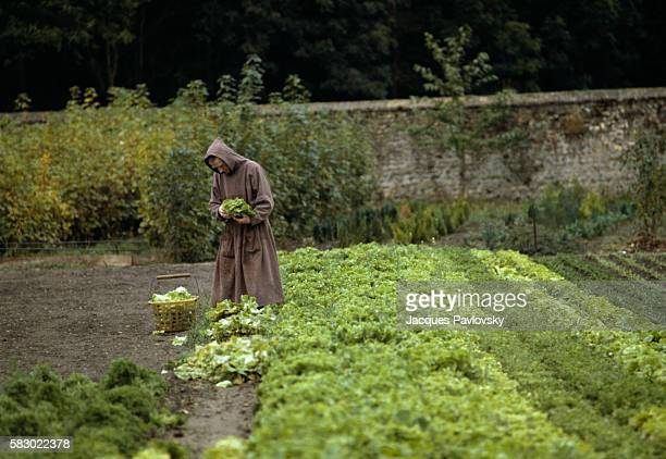 A trappist monk in the vegetable garden at the Abbey of NotreDame de la Trappe in Soligny In the 18th century the abbot Rance reformed the Cistercian...