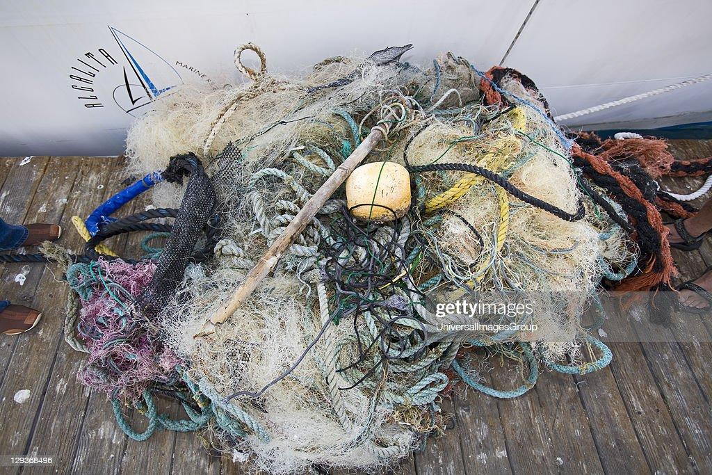 2009 Pacific Exploration of the ORV Alguita : News Photo