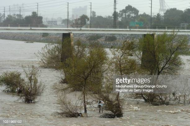 Trash bag resembling a person in a tree in the Los Angeles River just south of Willow Street in Long Beach, Calif., prompted calls to the fire...