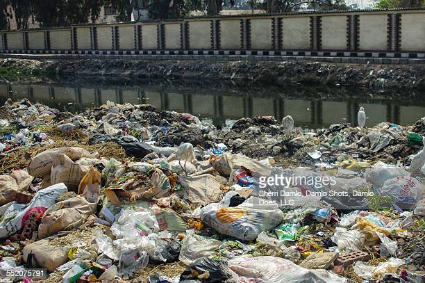 trash in an egyptian water canal - damlo does foto e immagini stock