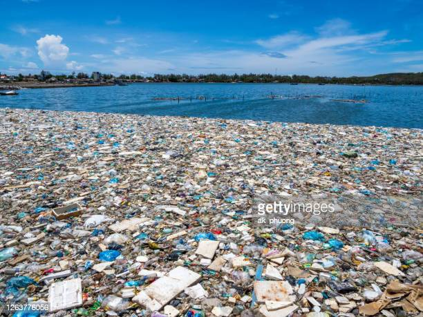 trash on lake - pacific ocean stock pictures, royalty-free photos & images