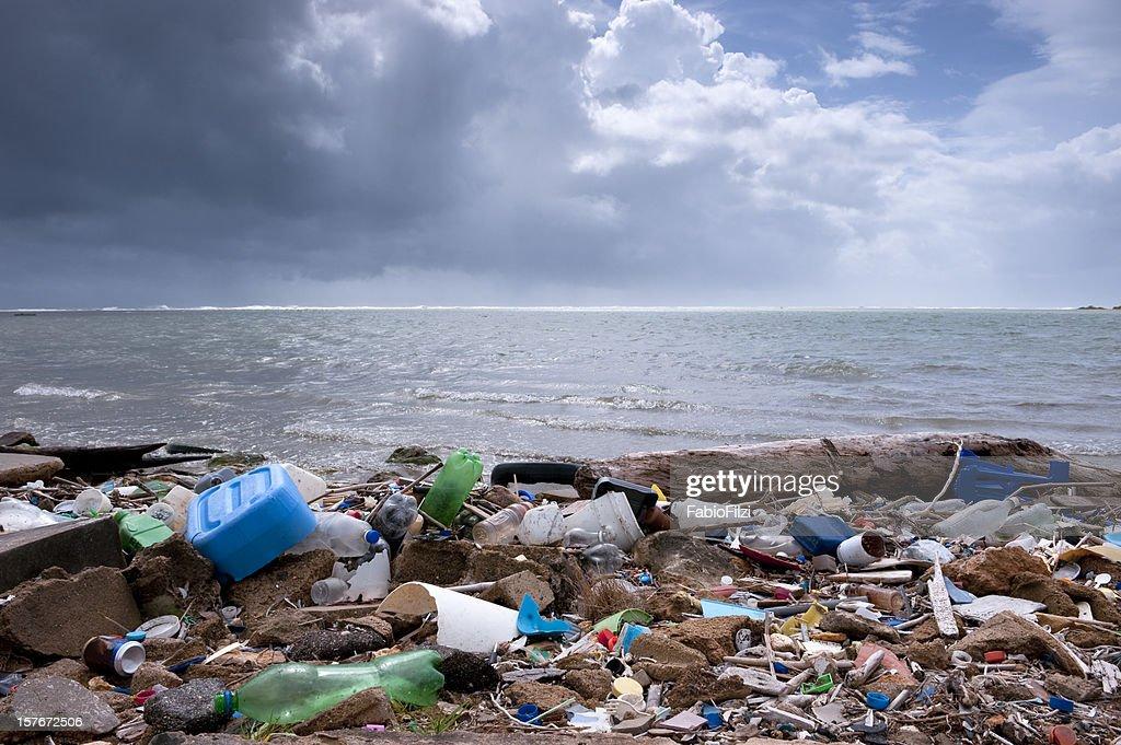 trash on the beach : Stock Photo