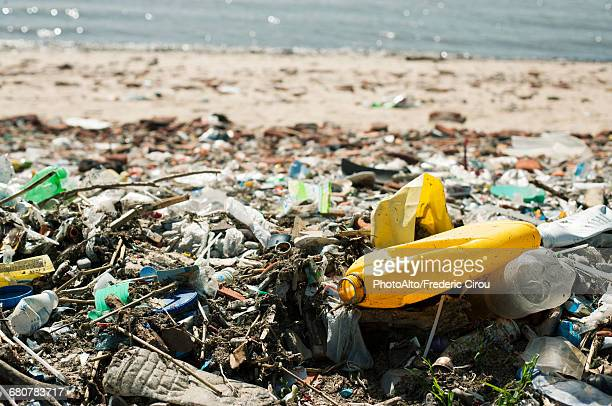 trash washed up on beach - pollution photos et images de collection
