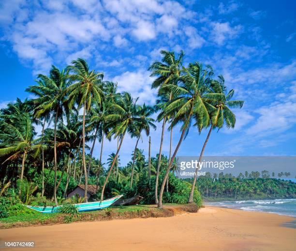 Traumhaft schoen und noch kaum entdeckt streckt sich die Palmenkueste Sri Lankas kilometerweit am Indischen Ozean dahin