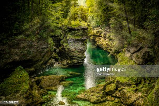 traunfall upper austria - upper austria stock pictures, royalty-free photos & images