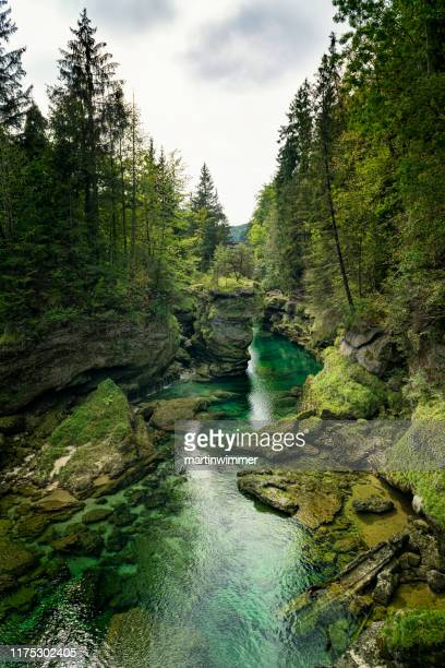traunfall upper austria - tranquil scene stock pictures, royalty-free photos & images