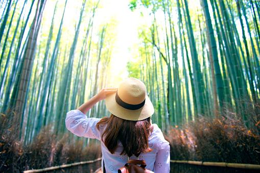 Travel at Arashiyama Bamboo forest in Kyoto. - gettyimageskorea
