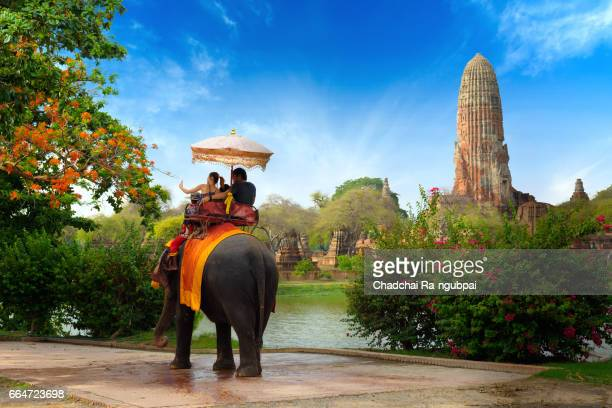 travel by elephant