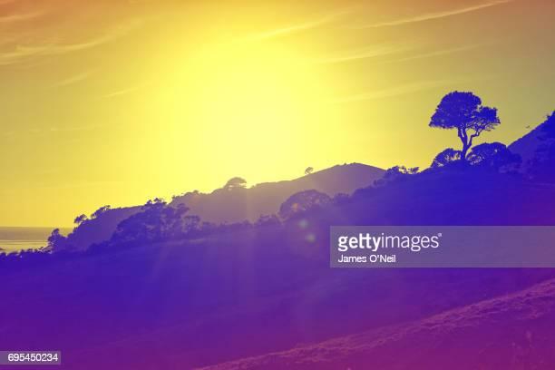 Travel Colour Surge Sunrise