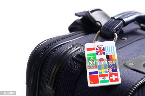 Travel luggage with multi-country identity label