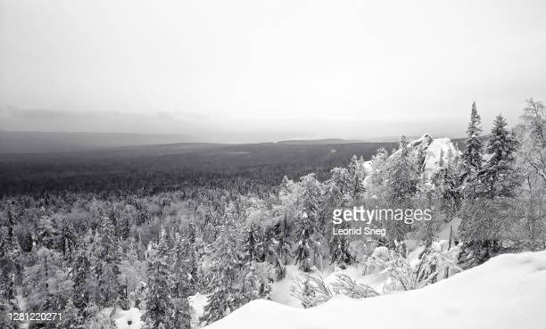 travel photography, winter forest and mountain landscape front view on the sky background, black and white - 北 ストックフォトと画像
