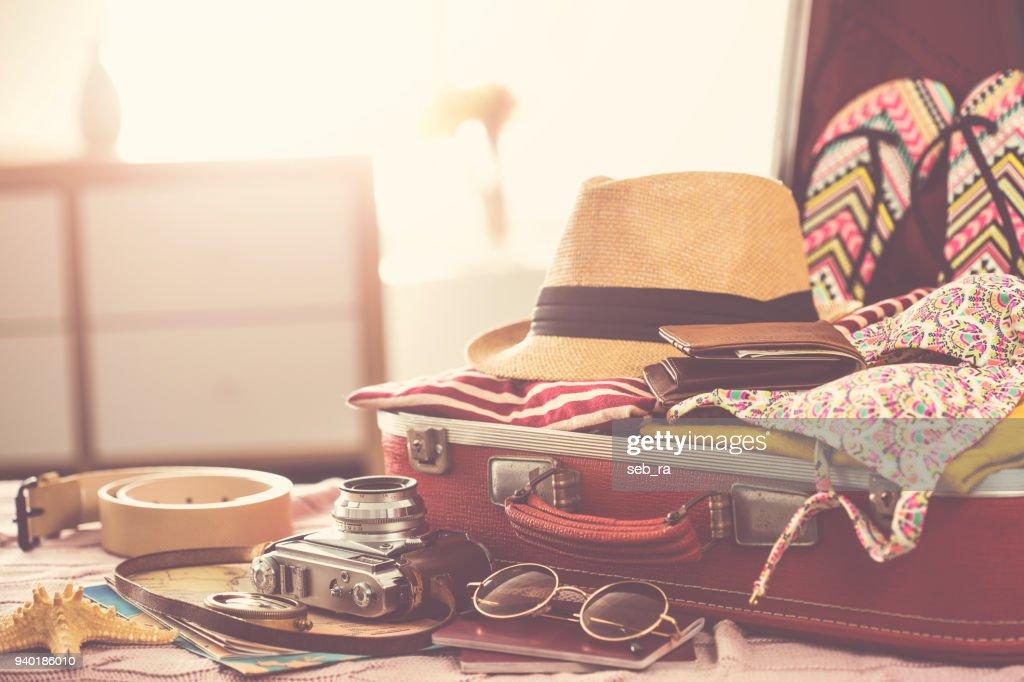 旅行スーツケースとりのコンセプト : ストックフォト