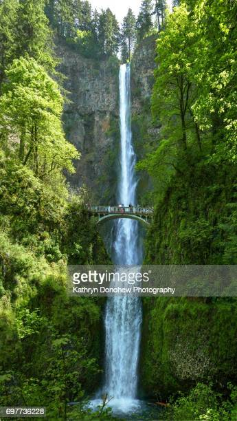 Travel Towns and Cities-Multnomah Falls
