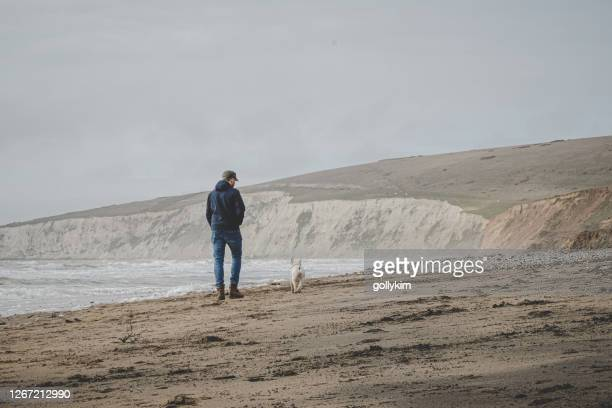 travel with dog during coronavirus pandemic. man walking dog at compton beach in isle of wight, england - isle of wight stock pictures, royalty-free photos & images