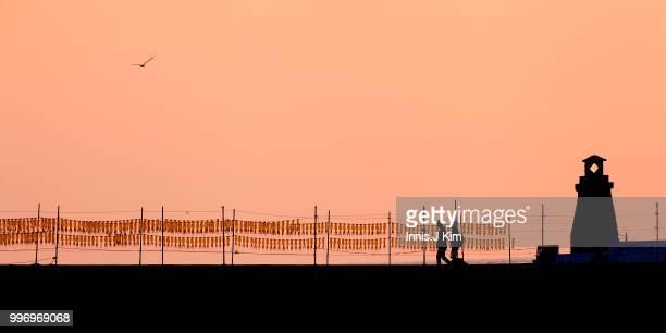 Traveler Couple