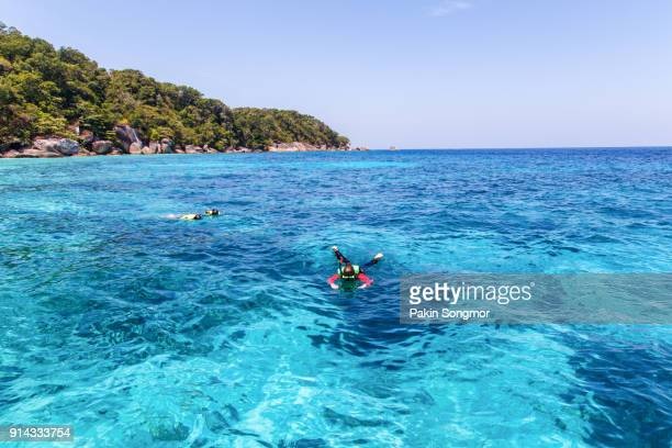Traveler snorkeling in Similan island at Mu Koh Surin National Park.