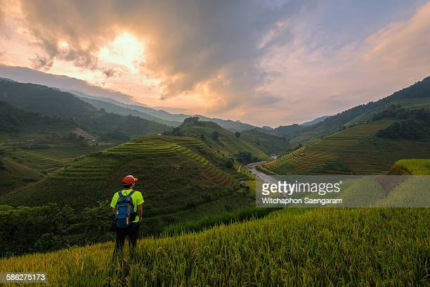 A traveler standing at hill of rice fields