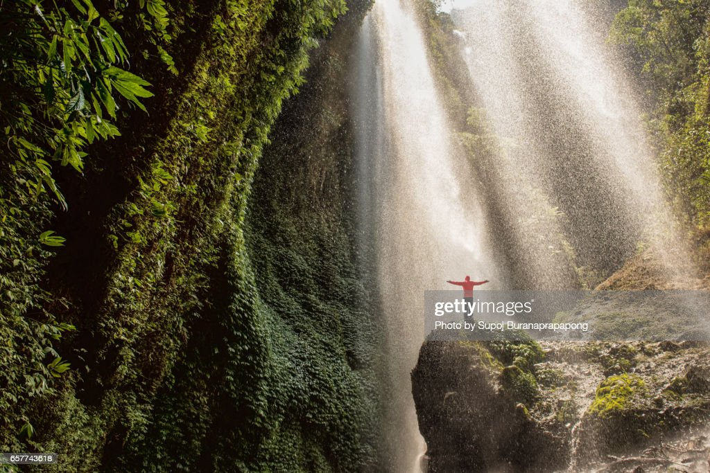 Traveler standing on the rock in the tropical rainforest at Madakaripura Waterfall , east java , indonesia : Foto de stock