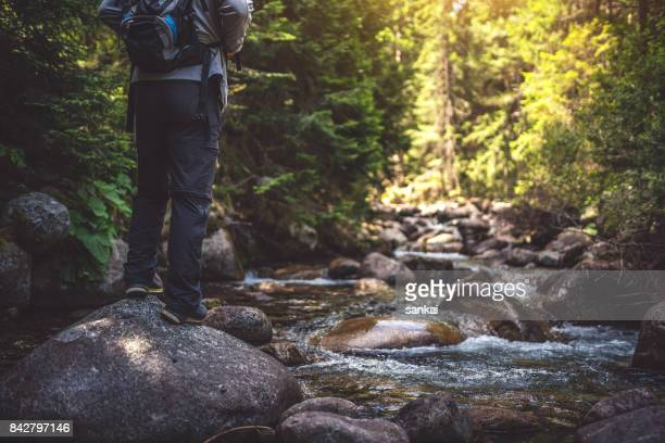 Traveler with a backpack walks in the the forest