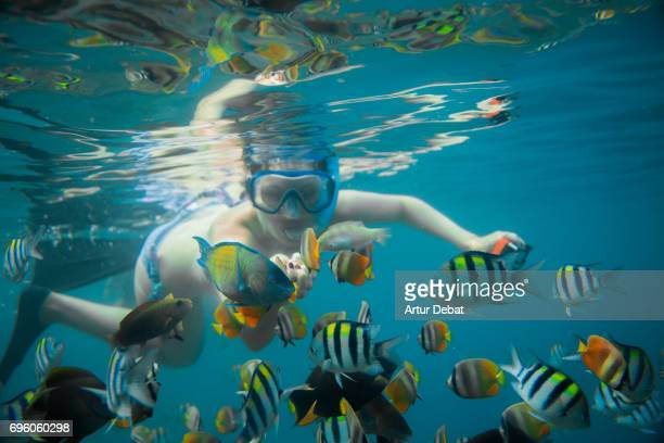 Traveler woman doing snorkel with beautiful underwater view and sea life close to Gili islands with colorful fishes and corals during vacations in Indonesia.