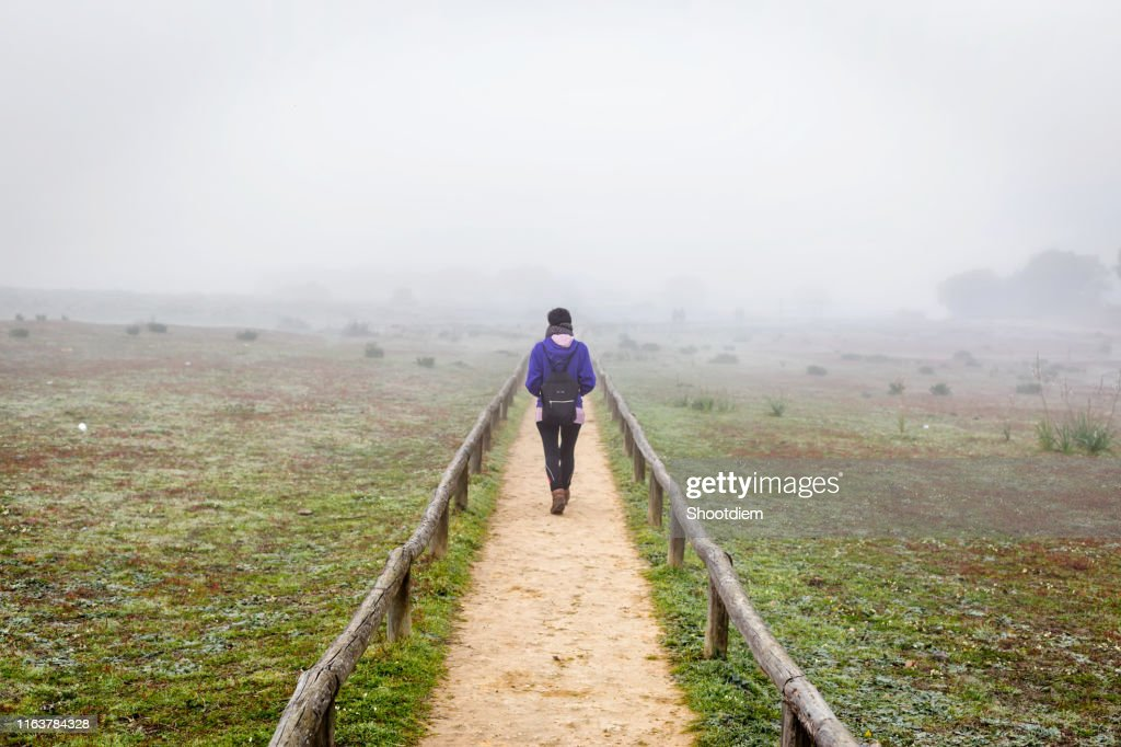 Traveler woman walking alone on a field surrounded by fog. Alone woman from back walking through the fog in forest. : Stock Photo