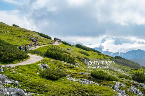 travelers hiking the dachstein mountains in summer, austria - hallstatt stock pictures, royalty-free photos & images