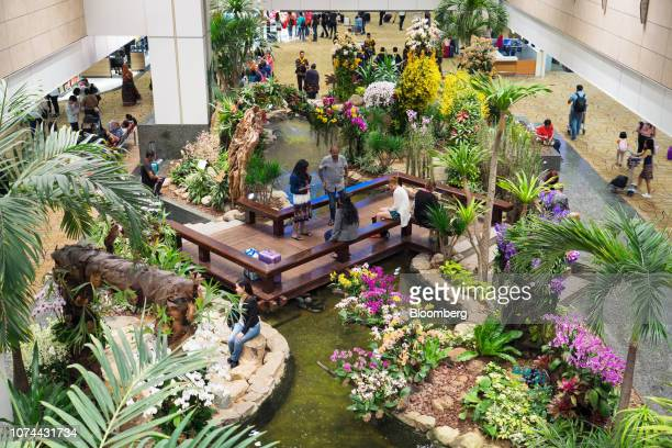 Travelers sit in a garden at Terminal 2 of Changi Airport in Singapore on Thursday Dec 13 2018 Singapore'sChangiAirport votedtheworld's bestfor...
