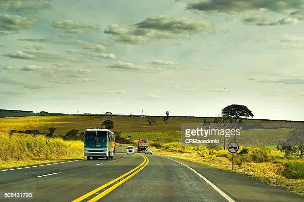 traveling by brazil. - crmacedonio stock photos and pictures