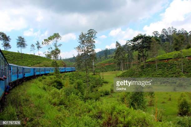 traveling by train in the mountains of sri lanka - kandy kandy district sri lanka stock pictures, royalty-free photos & images