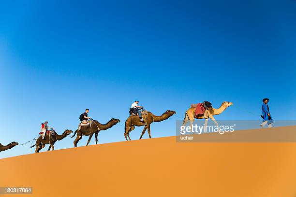 traveling on camels - camel stock pictures, royalty-free photos & images