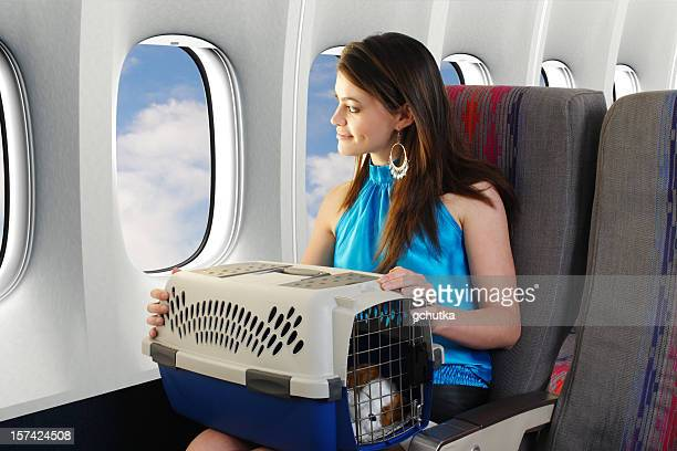 Traveling With A Pet