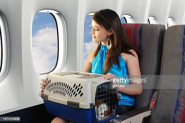 Voyagez avec un animal de compagnie