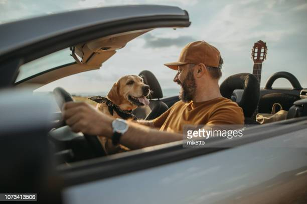 traveling with my best friend - convertible stock pictures, royalty-free photos & images