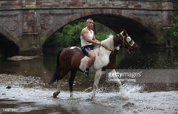 A traveller washes his horse in the River Eden in preparation for selling at the Appleby Horse Fair on June 7 2012 in Appleby England Appleby Horse...