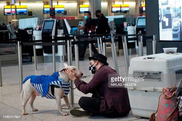 Traveller wearing a face covering sits with a dog at Terminal 2 of Heathrow Airport in west London on December 21 as a string of countries around the...