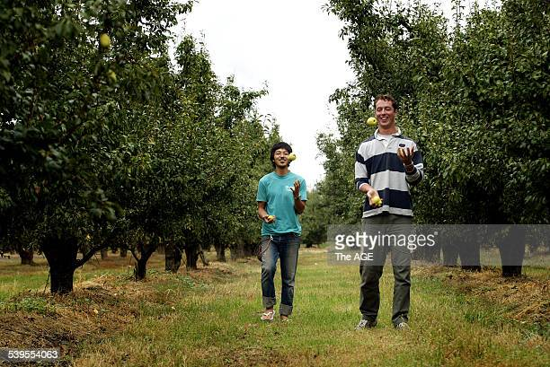 Travellers Gregory Lafontaine from France and Yuki Ito from Japan who are in the Goulburn Valley to find work as fruit pickers speak re todays...