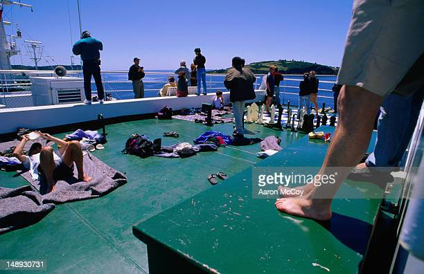 travellers on navimag boat avoiding 34-hour bus ride to puerto montt. - puerto montt fotografías e imágenes de stock