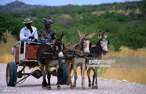 Travelling Herero couple, The Kaokoveld
