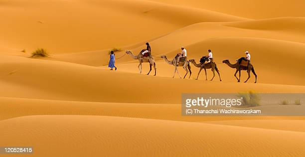 travelling with camels - camel train stock pictures, royalty-free photos & images